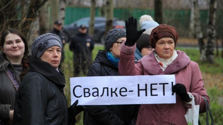 Путин поручил, но учтут ли мнение северян? Рассуждают активисты, депутаты, политологи и горожане