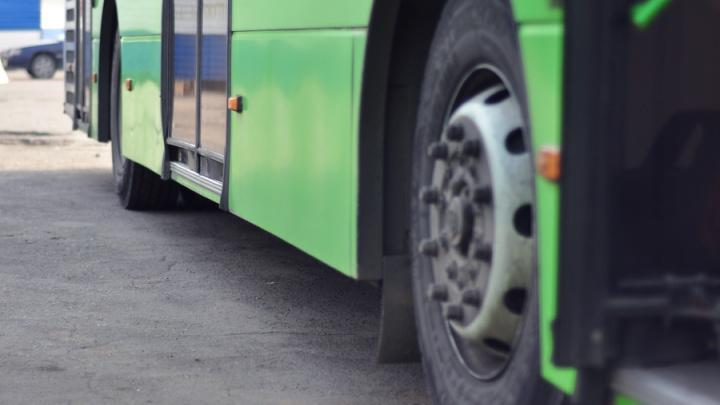 Пассажиры омского автобуса посчитали водителя пьяным и уложили его на асфальт