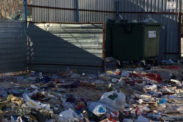 Единственный бак окружён горами мусора