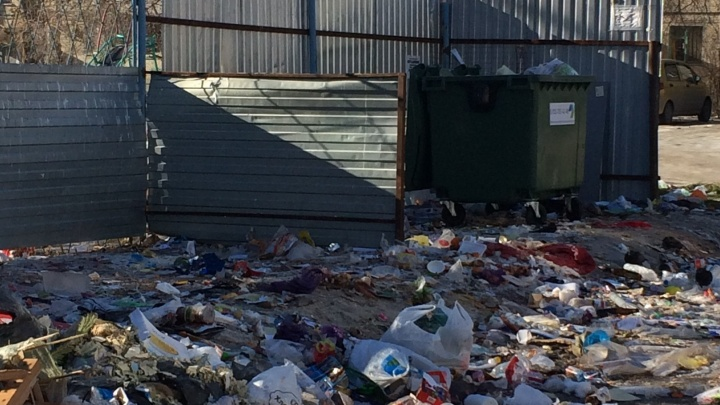 Один на всех: в Волгограде стали таинственно исчезать мусорные баки