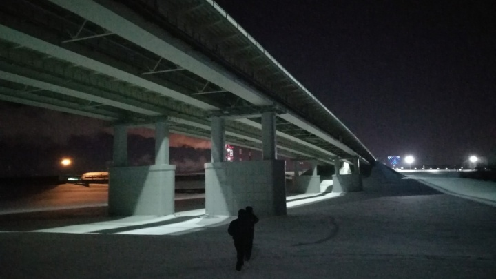 В Тюмени с моста сорвался мужчина