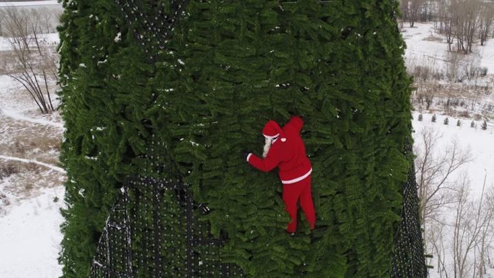 На Татышеве сфотографировали лазающего по самой высокой ёлке Санта-Клауса