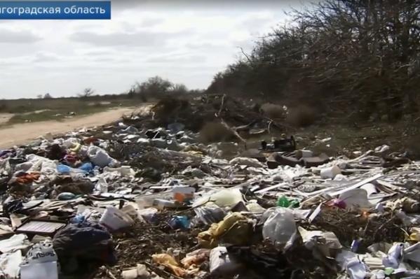 На телевидении пришли к выводу, что волгоградцы будут платить за мусор дважды