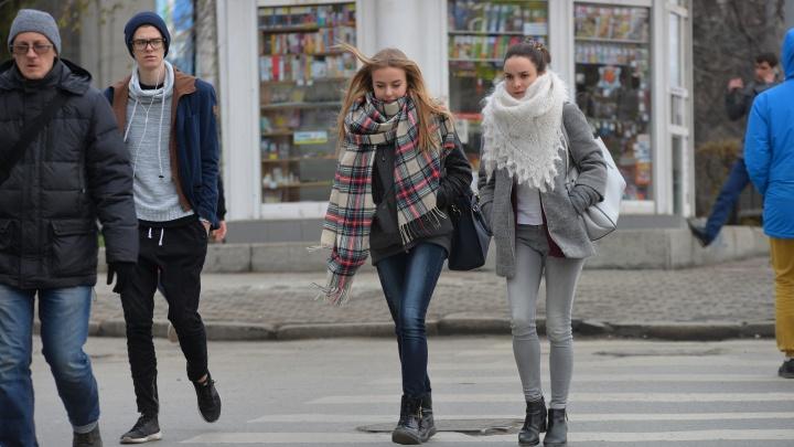 Привет, осень: на этой неделе в Екатеринбурге будет пасмурно и холодно