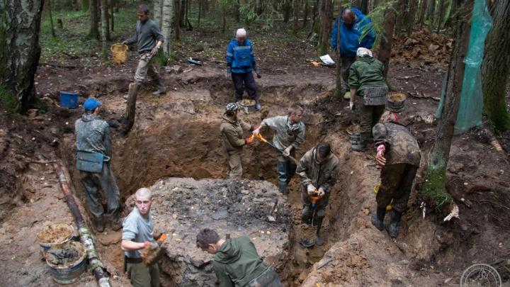 В Тверской области нашли самолёт летчика-красноярца времен Великой Отечественной войны