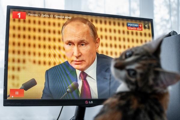 Не каждый котик будет спать, пока вещает Путин