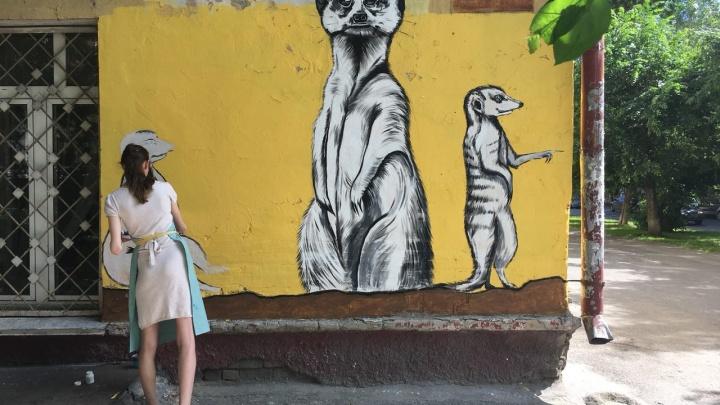 Девушка нарисовала 2-метровых сурикатов на доме в тихом центре