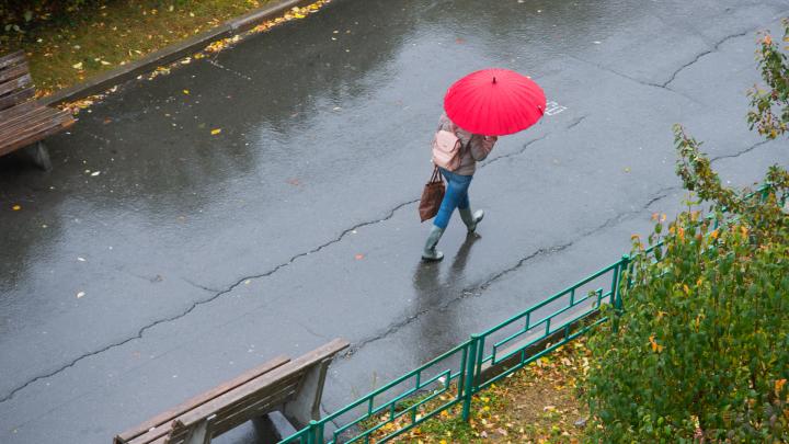 Теплее уже не будет: рассказываем, какая погода ждет екатеринбуржцев в ближайшие дни