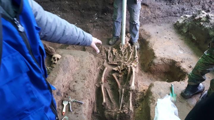 «Начали копать, нашли гроб»: археологи откопали в центре Архангельска останки человека и кота