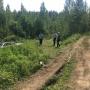 Под Ялуторовском автомобилистка отправилась по грибы и случайно сбила подругу, перепутав педали