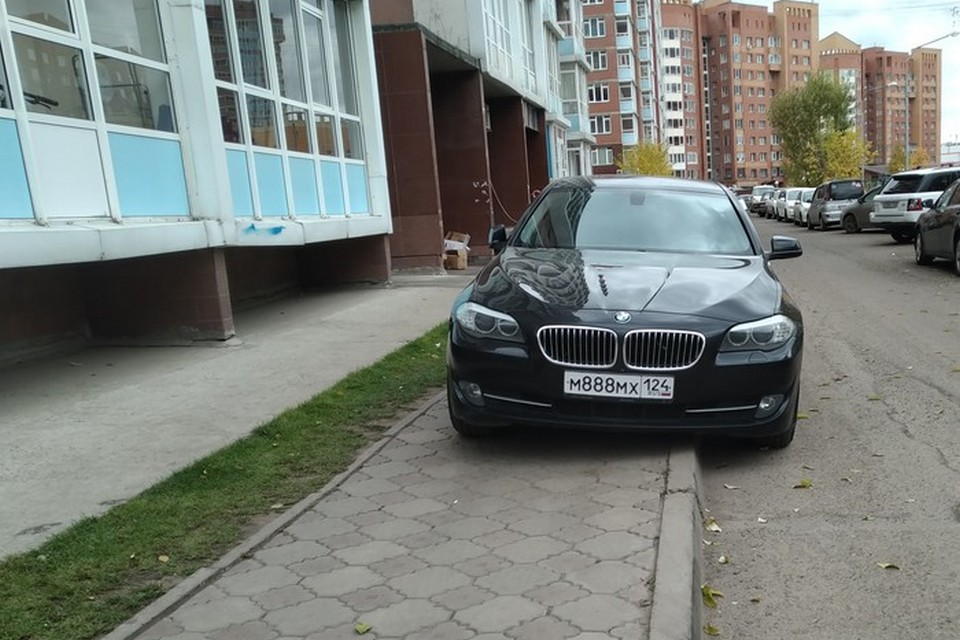 BMW головного мозга