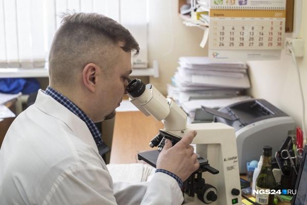 Специальную целлюлозу получают из отходов жизнедеятельности бактерий