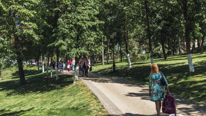 «Платить не будем!»: в мэрии прокомментировали просадку плитки в Струковском саду