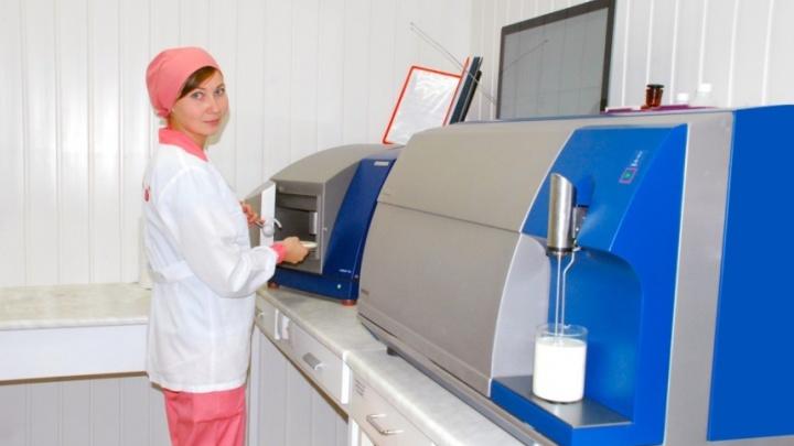 Точные и быстрые: на Архангельском молочном заводе внедрили высокие технологии