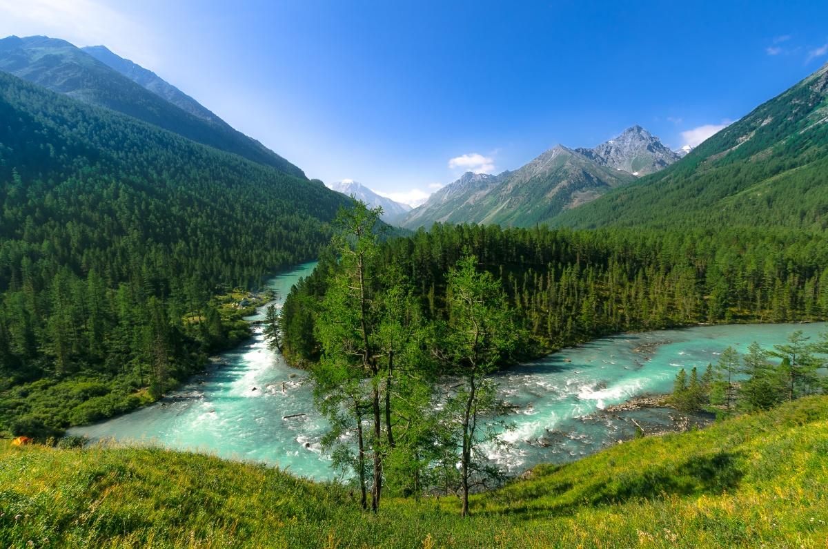 Картинки природа алтайского