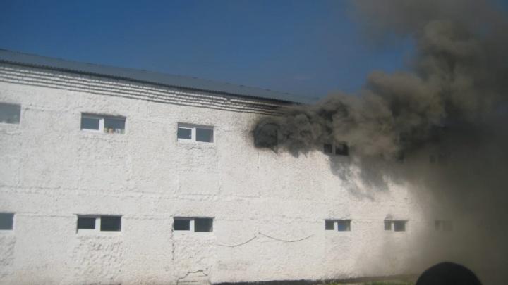 Пожарных пропускали 50 минут. В исправительной колонии под Чусовым произошло задымление