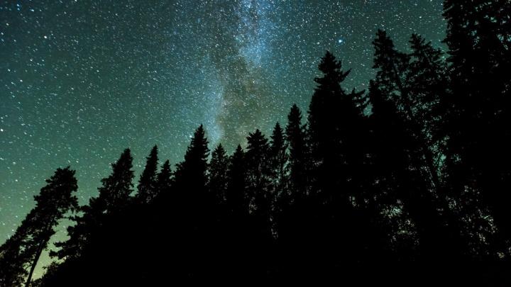 Ярославцы смогут увидеть метеоритные дожди: когда и где смотреть