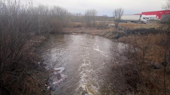Родители отвлеклись всего на две минуты: как маленькая девочка утонула в реке Исток