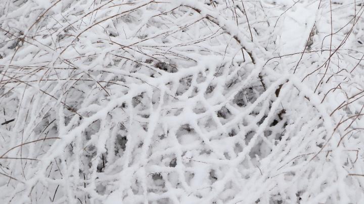 11-летний мальчик насмерть замерз в Перевозе