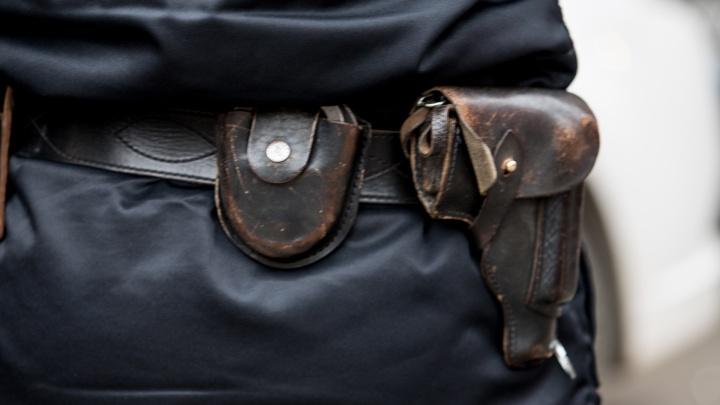 В Александровке полицейский застрелил азиатскую овчарку, напавшую на свою хозяйку