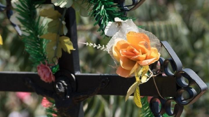 «Роман Лучников с треском продул»: суд признал законным договор администрации Волгограда и «Памяти»