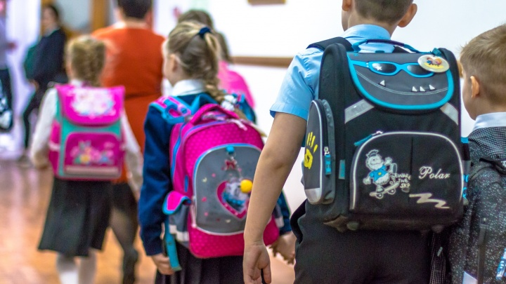 Власти Тольятти прокомментировали скандальное видео о стычке родителей с охранником в школе