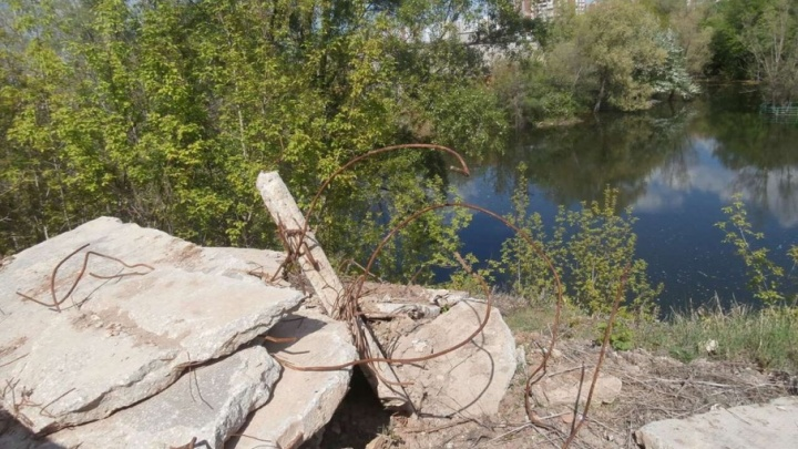 Выдадут грабли и перчатки: волонтеры очистят озеро Леснуха на 5-й просеке в Самаре