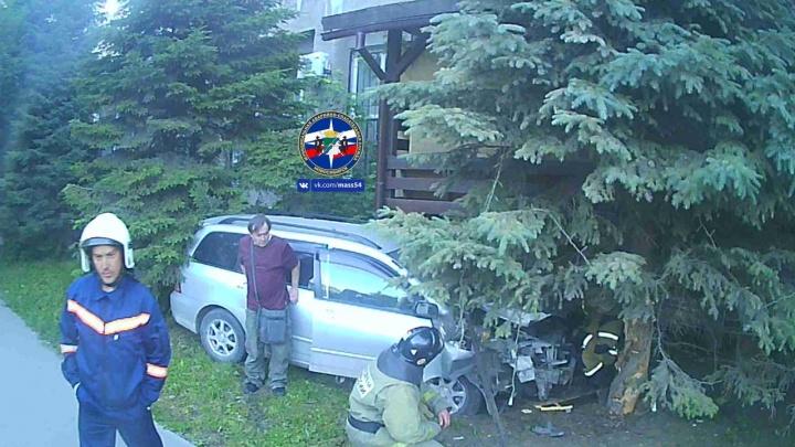 Автомобиль врезался в ёлку в центре Новосибирска