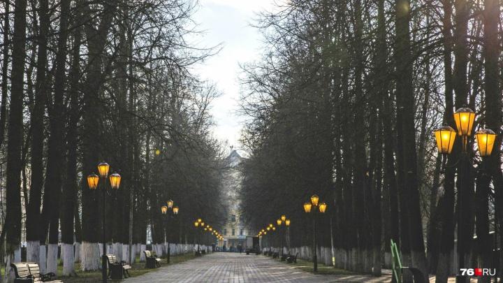 Власти передумали: в Ярославле решили, что делать с названием Первомайского бульвара
