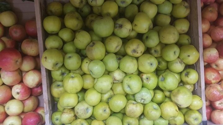 Груши и яблоки из Польши не дошли до прилавков курганских магазинов