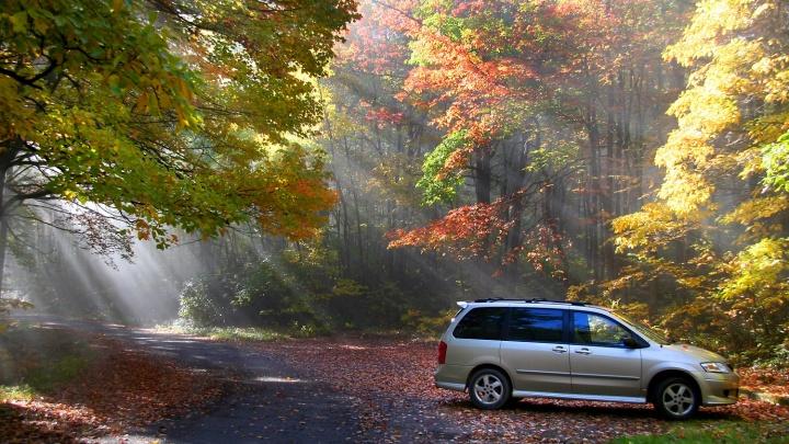 О чём мечтает автомобиль осенью