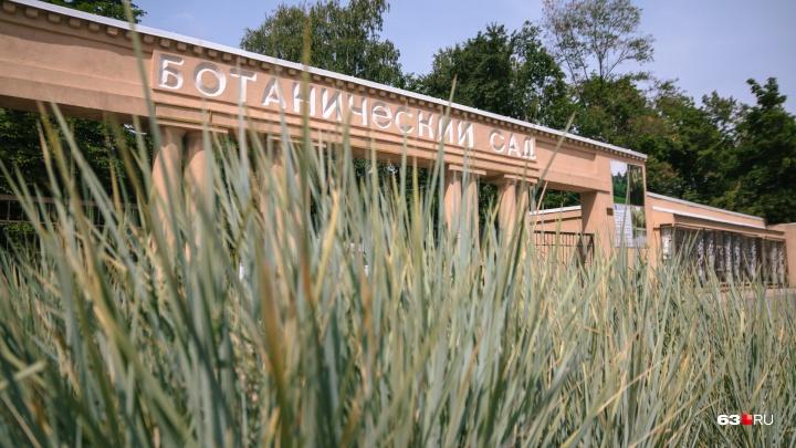 В Самаре Ботанический сад хотят поместить под особую охрану