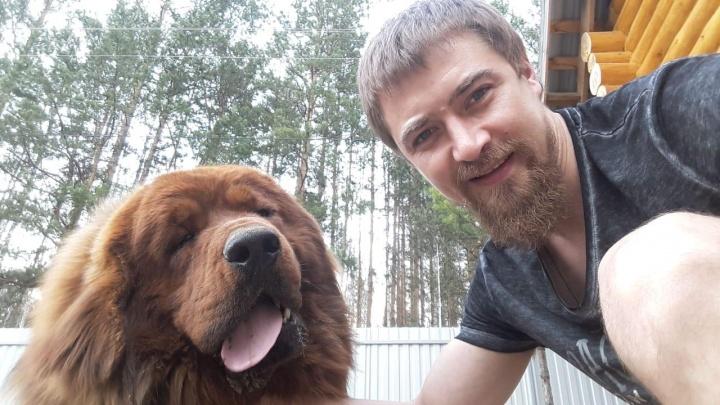Приехал на дачу покормить собаку и пропал: под Екатеринбургом ищут 36-летнего бизнесмена