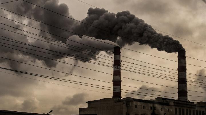 Больше не дымить: власти попросили не загрязнять воздух из-за холодов