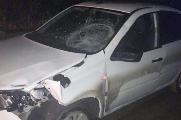 Не заметил в темноте: в Башкирии насмерть сбили мужчину