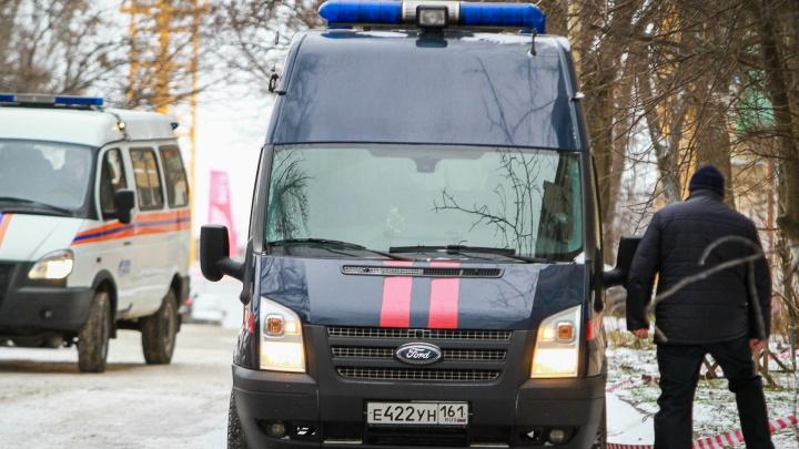 Следователи рассказали, как погибли школьники в Обливской