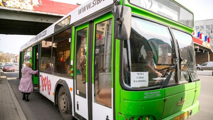 «Большие автобусы на тройке не нужны»: департамент транспорта ответил на вопросы о реформе маршрутов