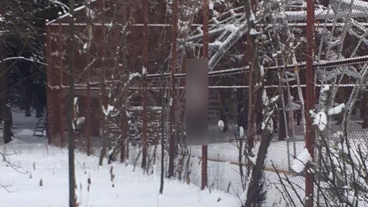 В Перми на территории базы отдыха «Чайка» нашли погибшую женщину
