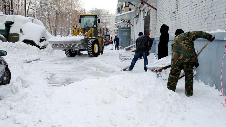Новосибирцы сто раз в неделю жалуются на уборку снега