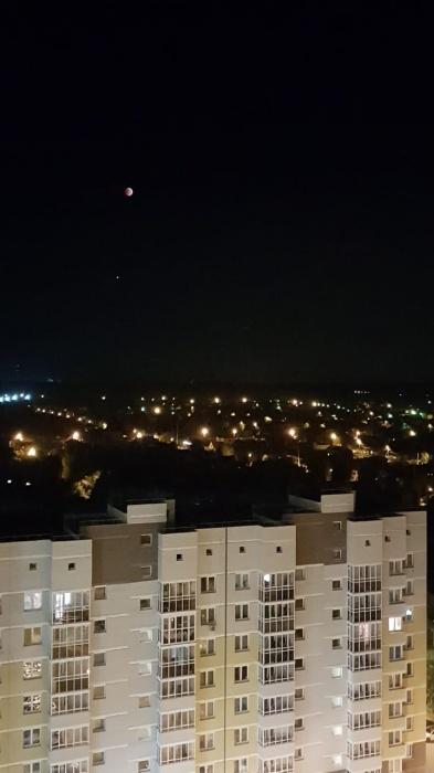 Сегодня очень романтичная ночь, ведь все смотрят на небо