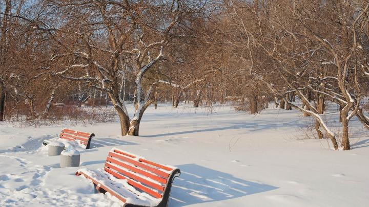 Холода отступят: синоптики назвали дату потепления в Новосибирске