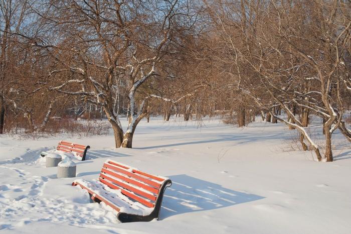 Потепление в Новосибирске ожидается к середине недели