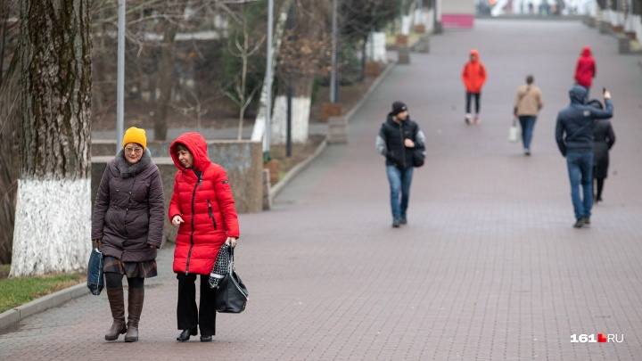 Зима не торопится: какая погода ждет ростовчан в выходные