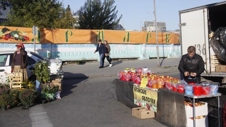 Площадь Маркса завалили картошкой, тыквами, яблоками и грибами