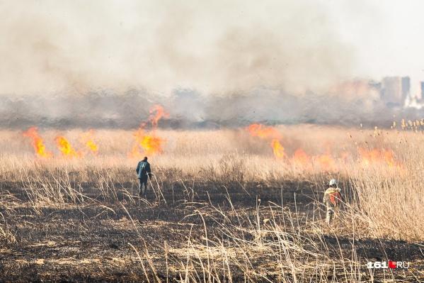 Повышенную пожароопасность в Ростовской области начали объявлять с середины мая