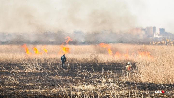 С 19 по 21 июня на Дону ожидается повышенная пожароопасность