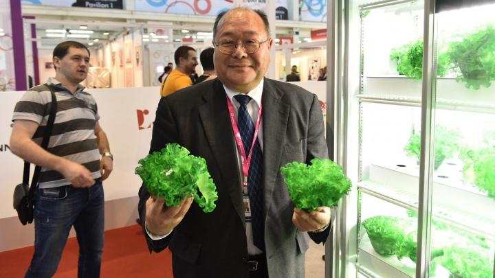 """Фабрика зелени и унитазы за 250 тысяч: экскурсия по стендам японских компаний на """"Иннопроме"""""""