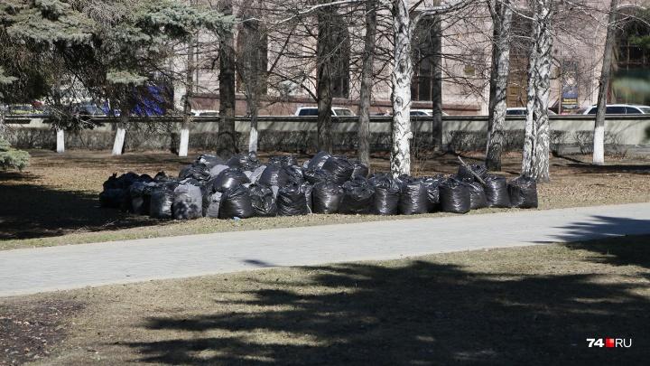 Убирали окурки под окнами мэрии: чистить сквер в центре города обязали учителей и школьников