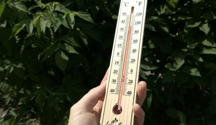 Последняя августовская жара доводит людей до солнечного удара: скоро придет похолодание