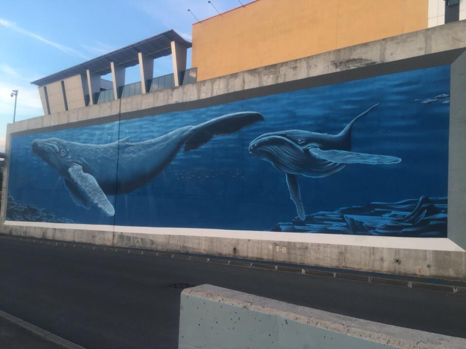 Длина граффити — 100 метров